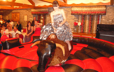 rodeo bull wedding hire